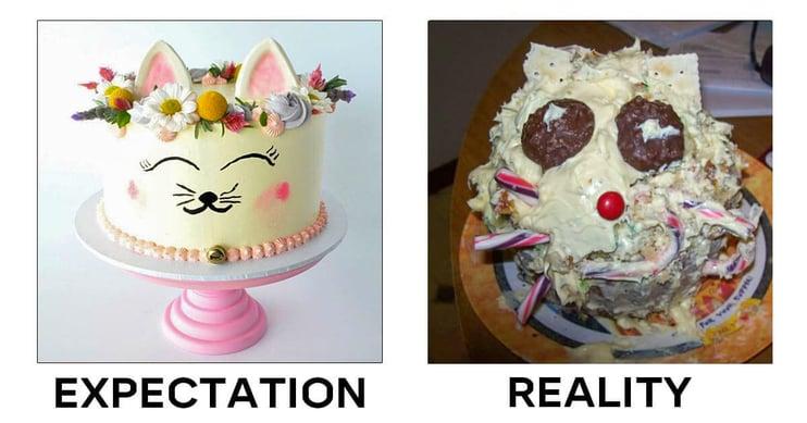 expectation-reality2