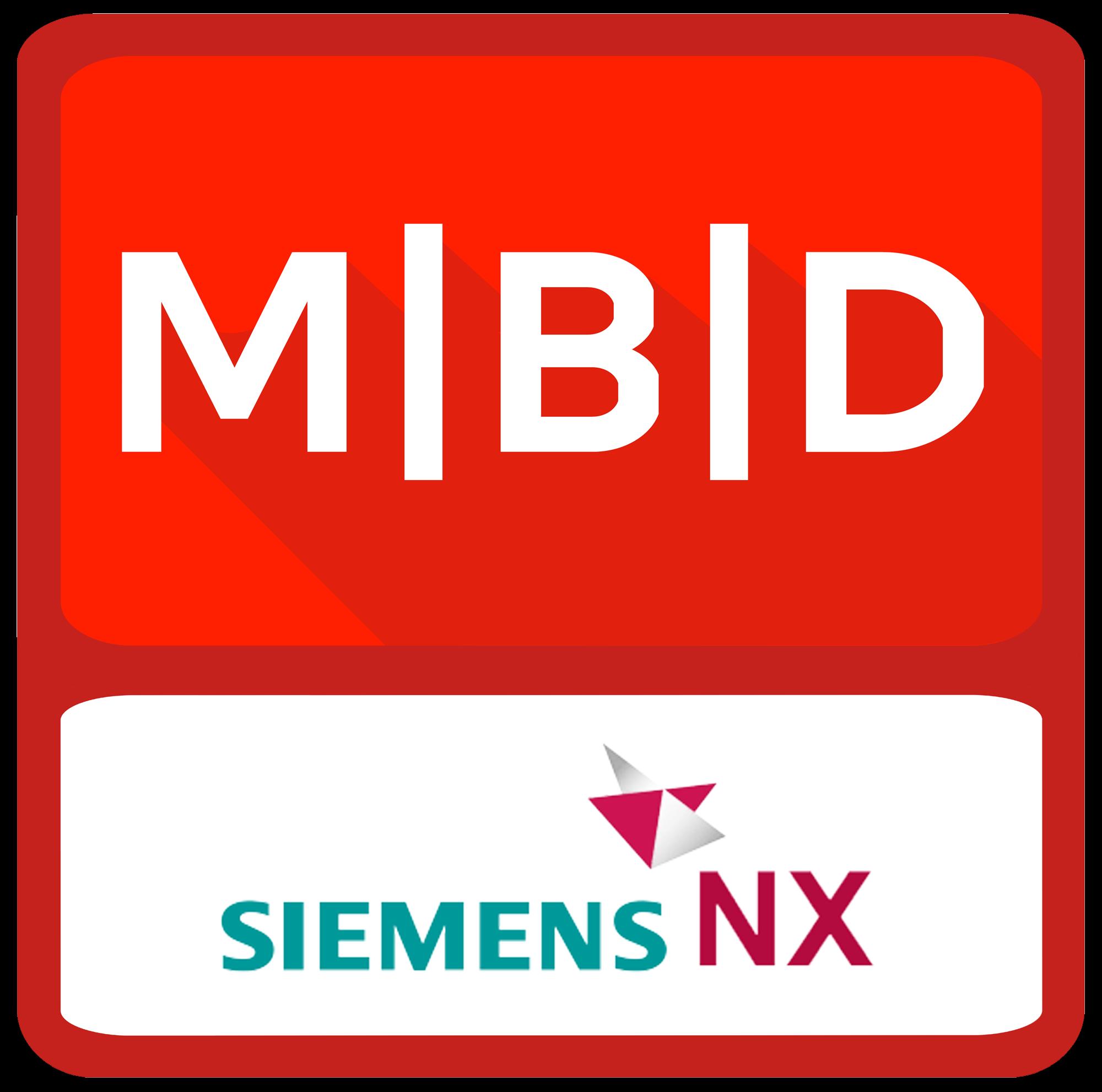 MBDVidia-NX-logo2